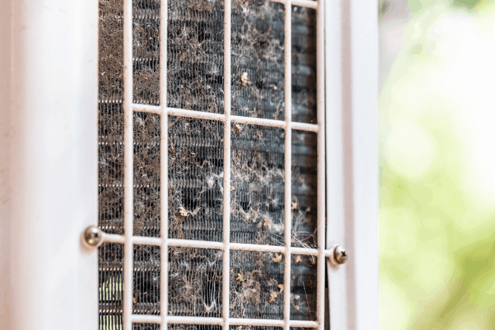 Can Air Conditioners Get Moldy?