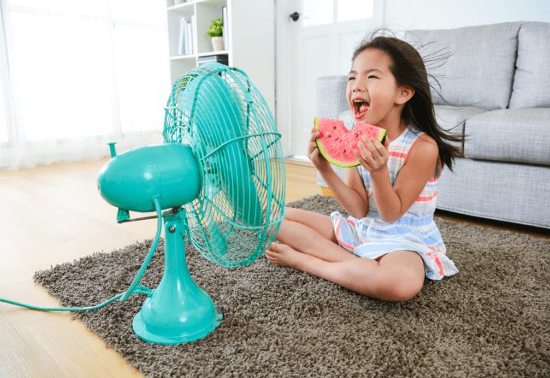 Can You Run a Whole-House Fan All Night?